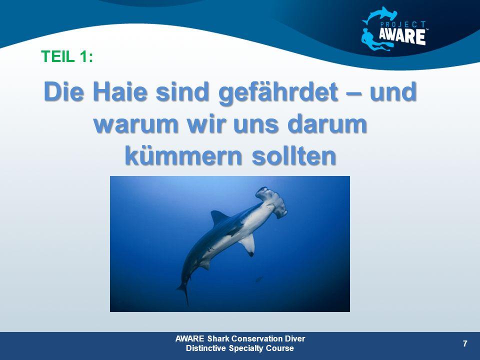Diese bevorzugen es, in der Mitte einer Seegraswiese zu weiden Sie bleiben am Rand, wenn Haie in der Nähe sind Seegraswiesen sind wichtiger Lebensraum für viele Arten Anwesenheit von Haien kann Seegraswiesen vor Überweidung durch Dugongs (Gabelschwanzseekühe) und Grüne Meeresschildkröten schützen: AWARE Shark Conservation Diver Distinctive Specialty Course 18 T1: Die Haie sind gefährdet Haie sorgen dafür, dass die Meere gesund bleiben – Wichtig für alle Tiere und die Menschen.