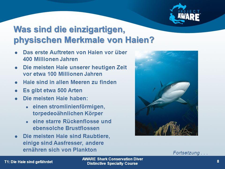 Der ökonomische Wert der Haie in manchen Ländern Haie bieten Einkommen und Eiweiß für viele Menschen, und dies kann auch in Zukunft so sein, wenn das Fischen nachhaltig erfolgt Haie bieten für Länder und örtliche Gemeinschaften ökonomische Vorteile, und zwar als Nahrungsquelle und als Touristenattraktion AWARE Shark Conservation Diver Distinctive Specialty Course 49 T2: Gefahrenmanagement Fortsetzung...