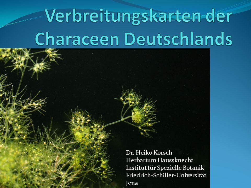 Dr. Heiko Korsch Herbarium Haussknecht Institut für Spezielle Botanik Friedrich-Schiller-Universität Jena