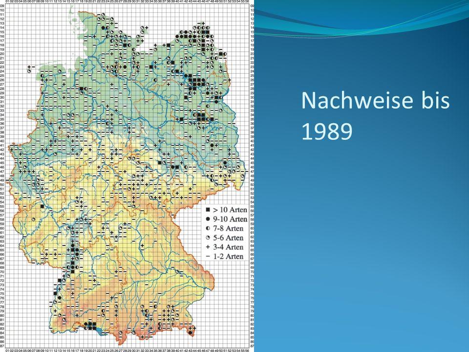 Nachweise bis 1989