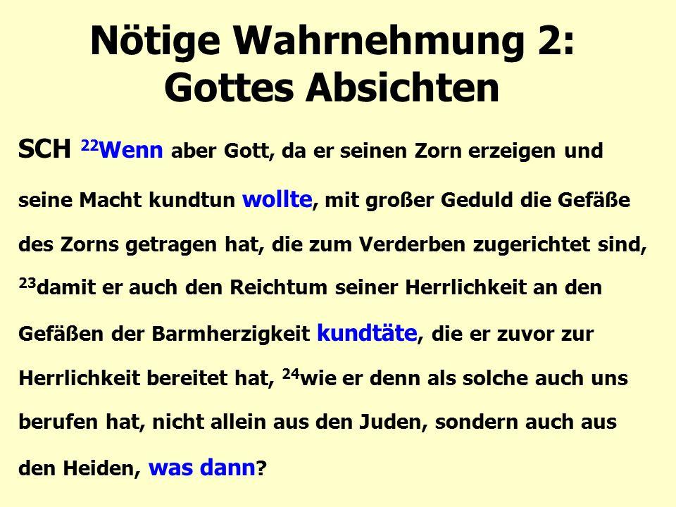 Nötige Wahrnehmung 2: Gottes Absichten SCH 22 Wenn aber Gott, da er seinen Zorn erzeigen und seine Macht kundtun wollte, mit großer Geduld die Gefäße