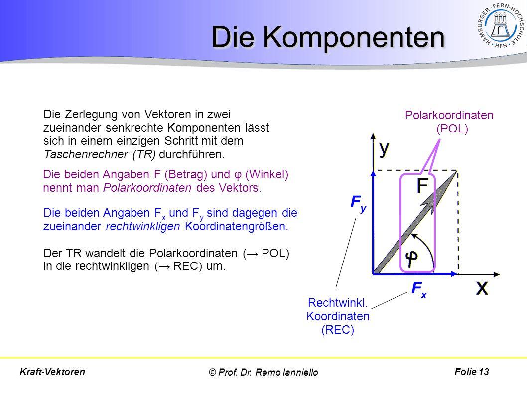 Die Komponenten © Prof. Dr. Remo IannielloFolie 13Kraft-Vektoren FxFx FyFy Die Zerlegung von Vektoren in zwei zueinander senkrechte Komponenten lässt