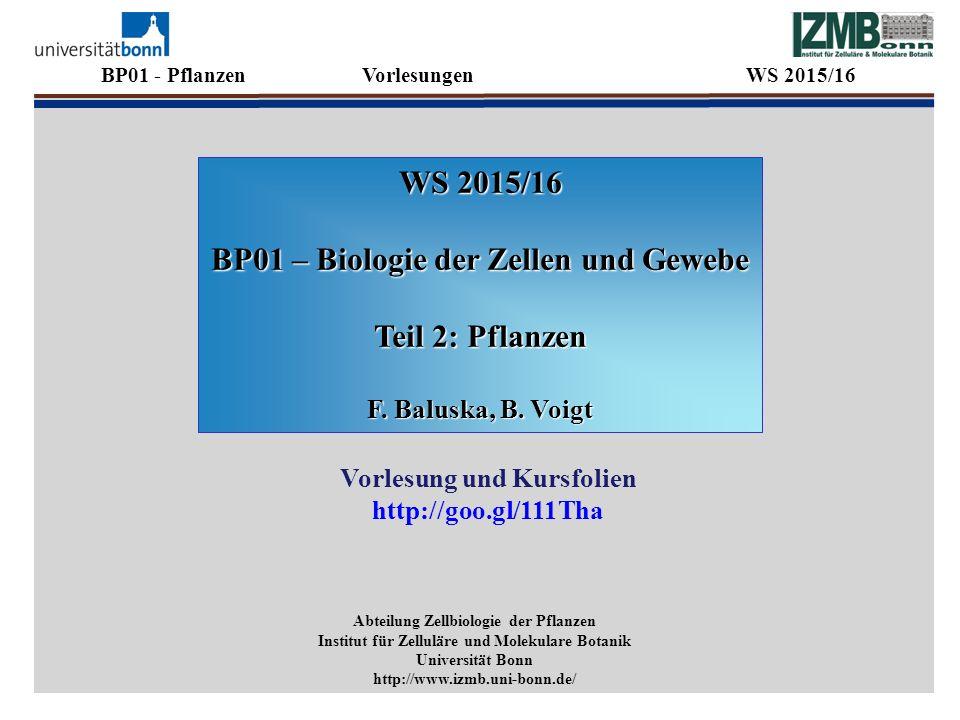BP01 - Pflanzen Vorlesungen WS 2015/16 WS 2015/16 BP01 – Biologie der Zellen und Gewebe Teil 2: Pflanzen F. Baluska, B. Voigt Abteilung Zellbiologie d