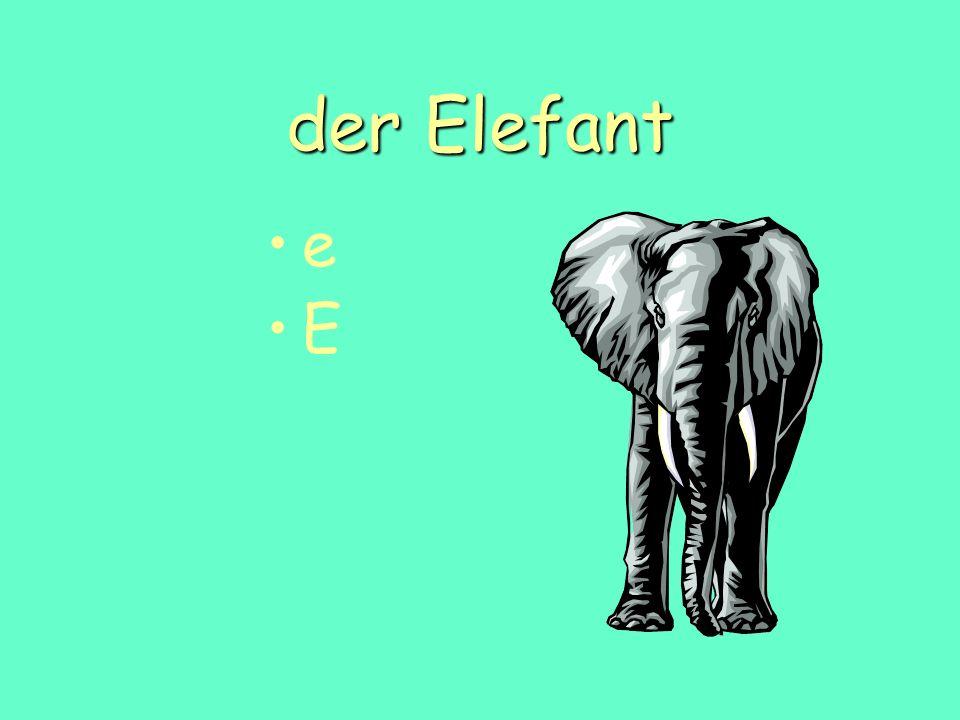 der Elefant e E