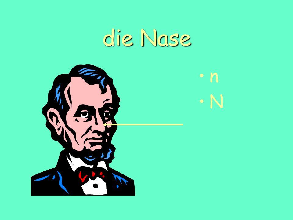 die Nase n N