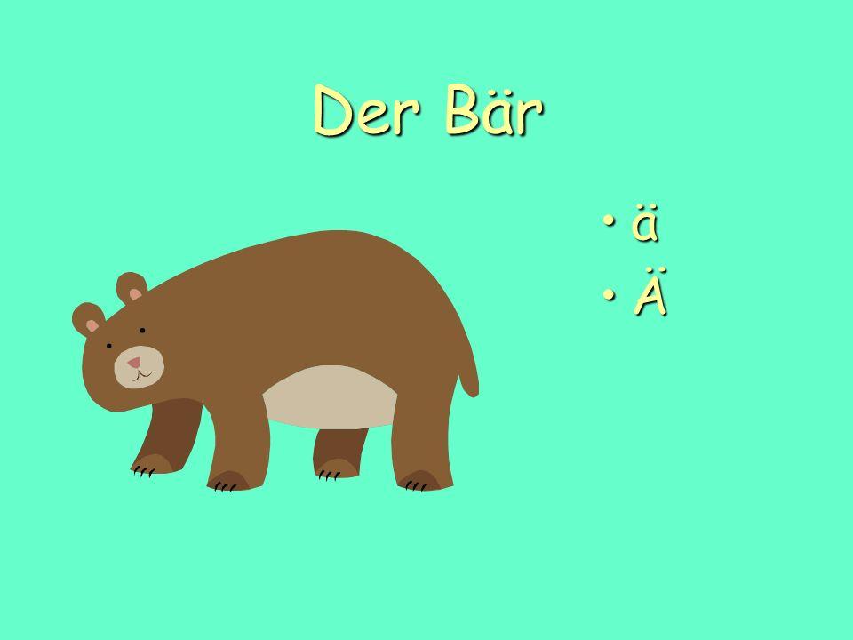 Der Bär ä Ä