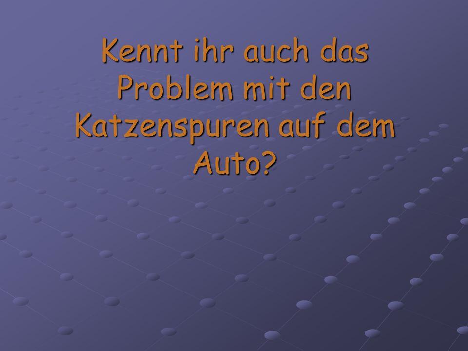 Kennt ihr auch das Problem mit den Katzenspuren auf dem Auto?