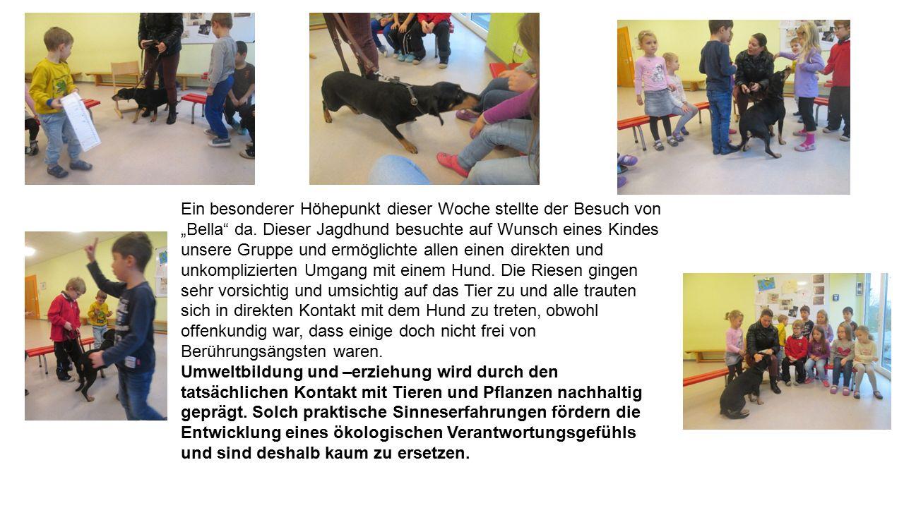 Der Besuch des Hundes hatte die Kinder zu einer weiteren Bastelarbeit inspiriert – wir wollten Hunde falten.