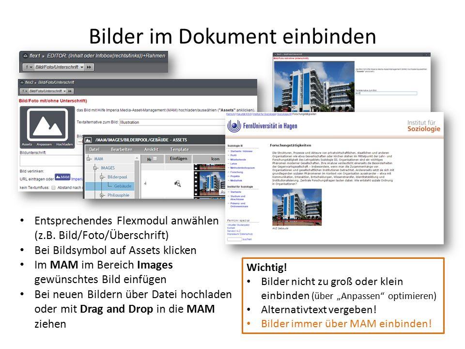 Bilder im Dokument einbinden Entsprechendes Flexmodul anwählen (z.B.