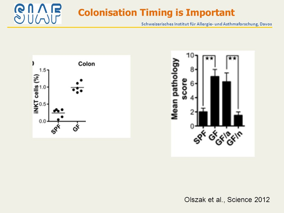 Olszak et al., Science 2012 Schweizerisches Institut für Allergie- und Asthmaforschung, Davos Colonisation Timing is Important