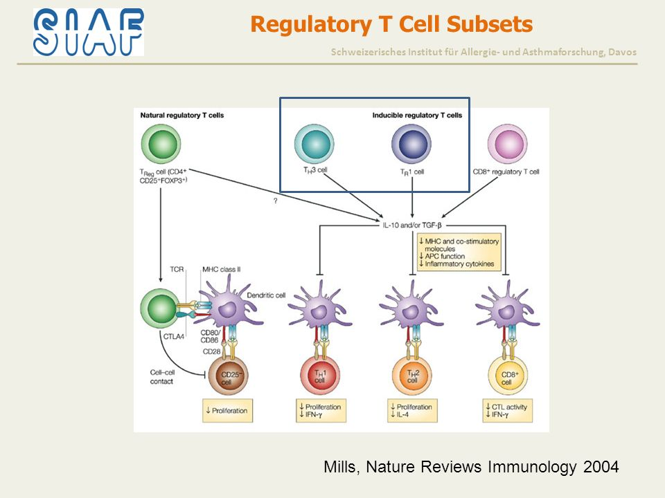 Mills, Nature Reviews Immunology 2004 Regulatory T Cell Subsets Schweizerisches Institut für Allergie- und Asthmaforschung, Davos
