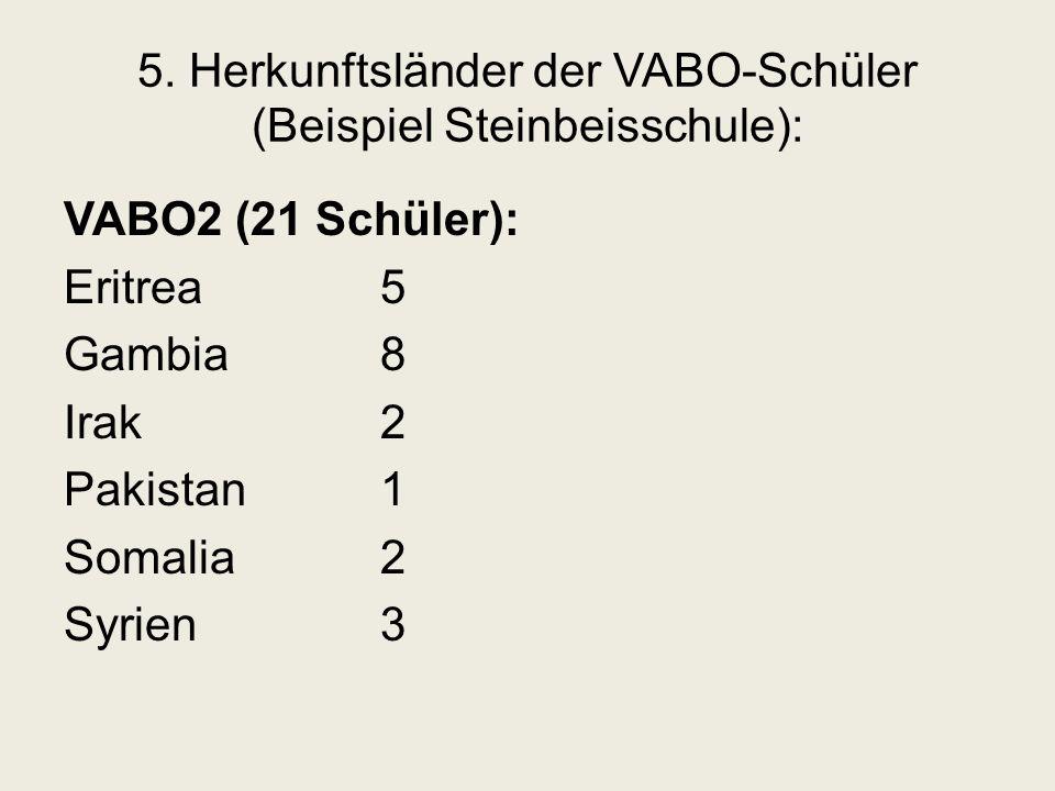 5. Herkunftsländer der VABO-Schüler (Beispiel Steinbeisschule): VABO2 (21 Schüler): Eritrea5 Gambia8 Irak2 Pakistan1 Somalia2 Syrien3