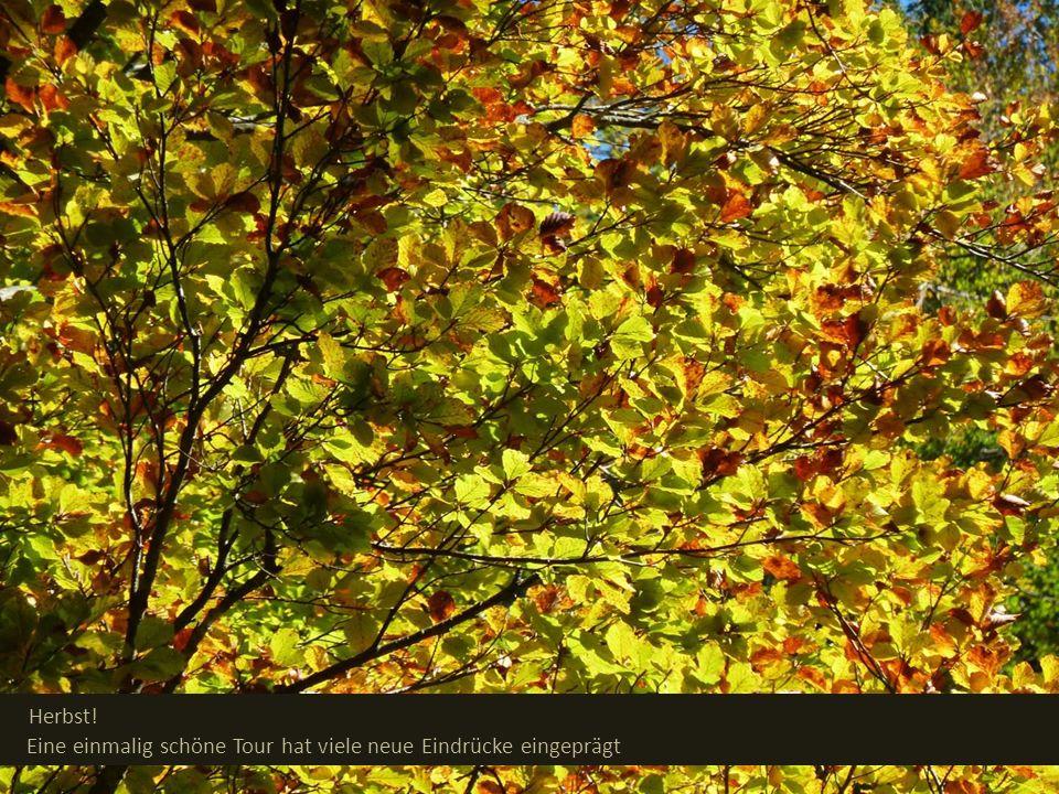 Herbst! Eine einmalig schöne Tour hat viele neue Eindrücke eingeprägt