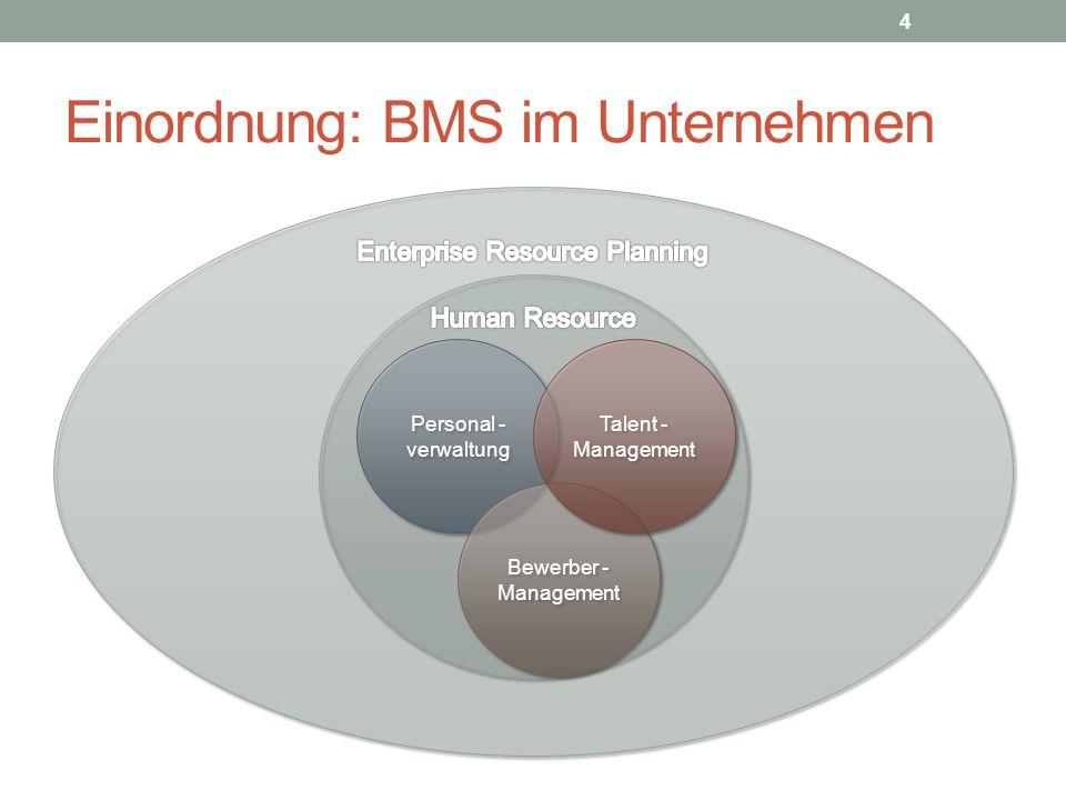 BMS im Unternehmen: Zahlen (2014) Welche Recruiting – Technologie ist im Einsatz.