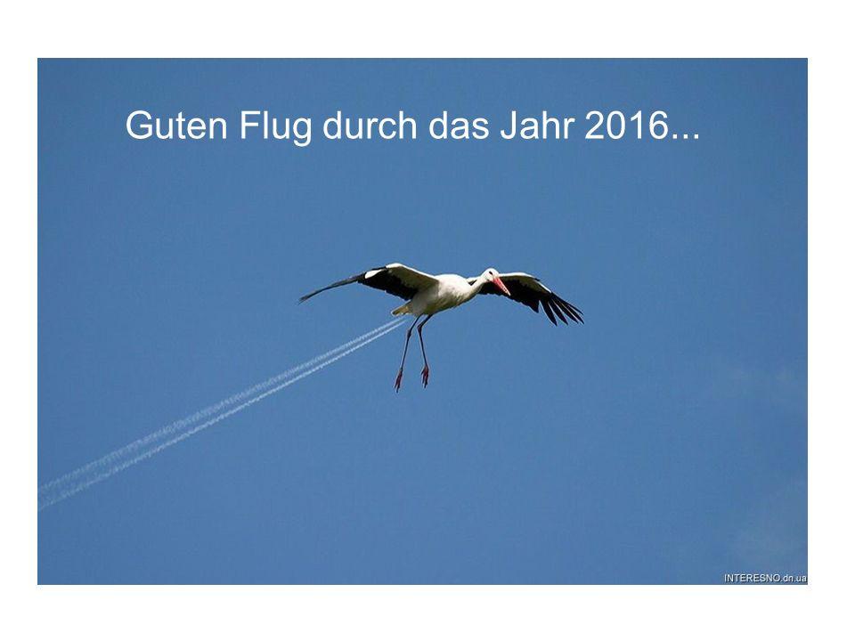 Guten Flug durch das Jahr 2016...