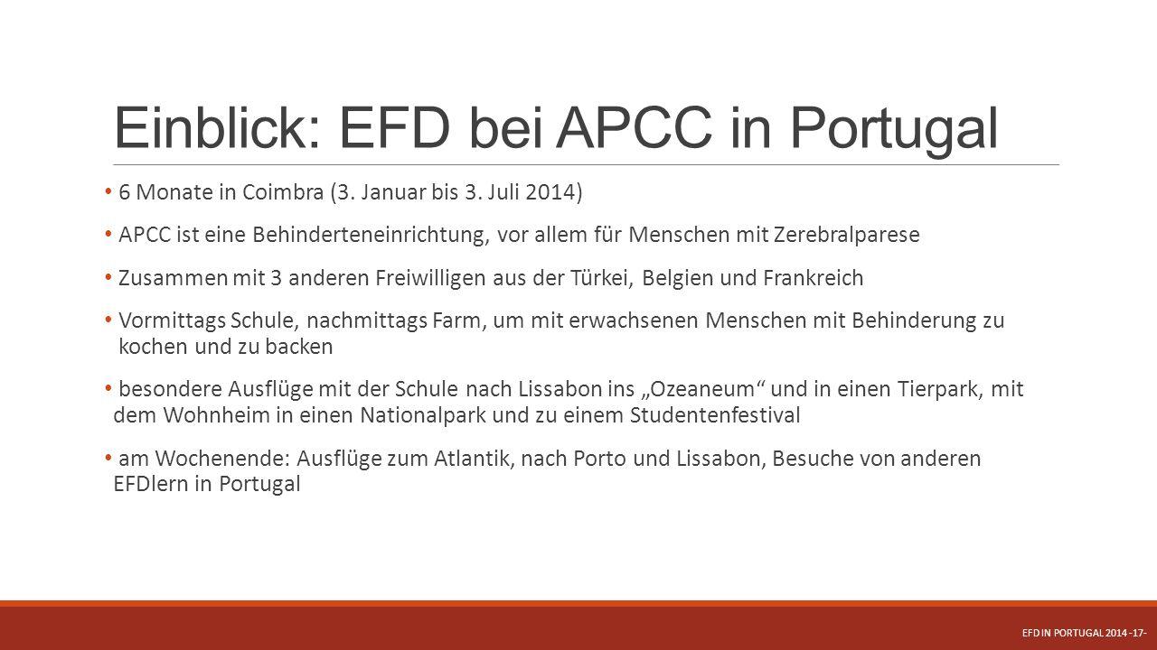 Einblick: EFD bei APCC in Portugal 6 Monate in Coimbra (3. Januar bis 3. Juli 2014) APCC ist eine Behinderteneinrichtung, vor allem für Menschen mit Z