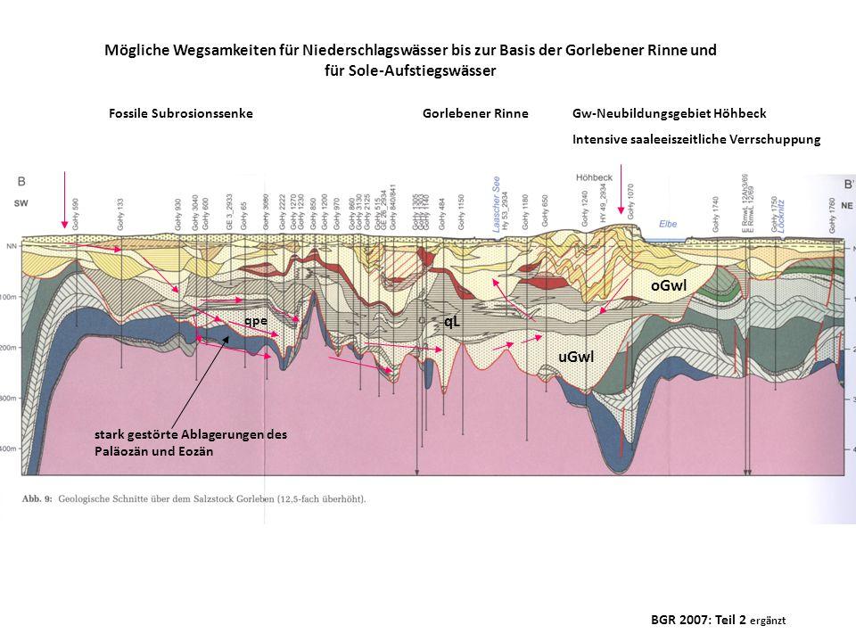 BGR 2007: Teil 2 ergänzt Fossile SubrosionssenkeGorlebener Rinne stark gestörte Ablagerungen des Paläozän und Eozän Mögliche Wegsamkeiten für Niedersc