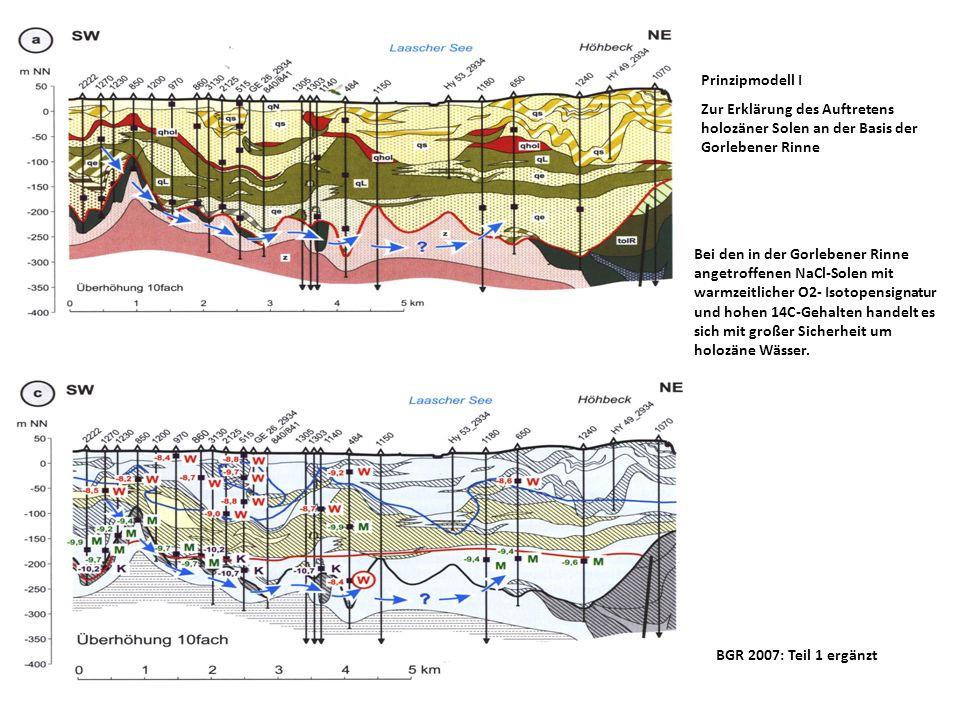 BGR 2007: Teil 2 ergänzt Fossile SubrosionssenkeGorlebener Rinne stark gestörte Ablagerungen des Paläozän und Eozän Mögliche Wegsamkeiten für Niederschlagswässer bis zur Basis der Gorlebener Rinne und für Sole-Aufstiegswässer Gw-Neubildungsgebiet Höhbeck Intensive saaleeiszeitliche Verrschuppung uGwl oGwl qpe qL