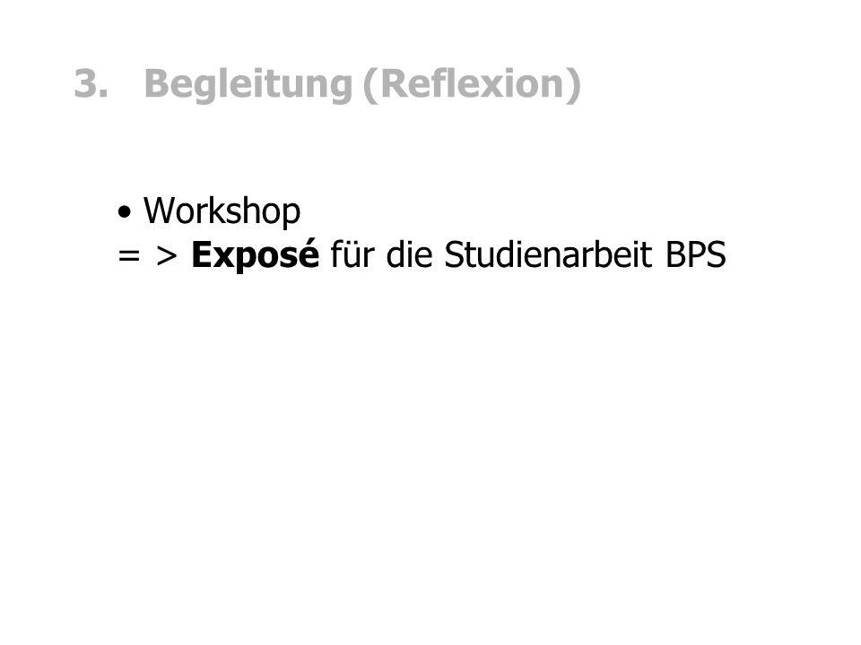 3. Begleitung (Reflexion) Workshop = > Exposé für die Studienarbeit BPS
