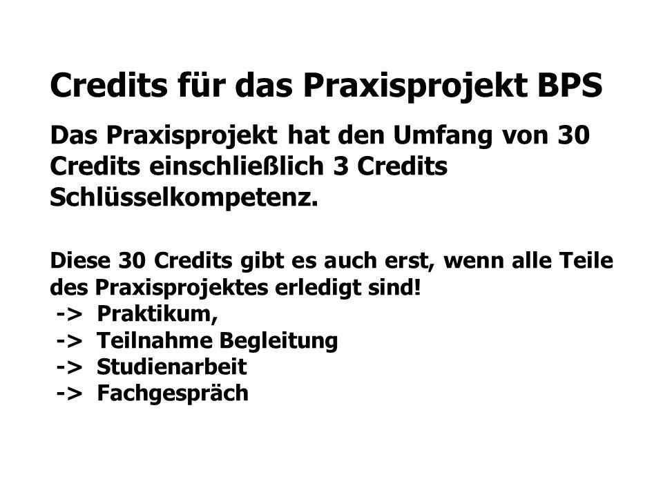 Credits für das Praxisprojekt BPS Das Praxisprojekt hat den Umfang von 30 Credits einschließlich 3 Credits Schlüsselkompetenz.