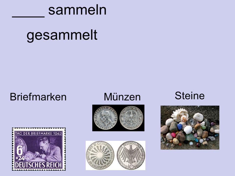 ____ sammeln Briefmarken Münzen gesammelt Steine