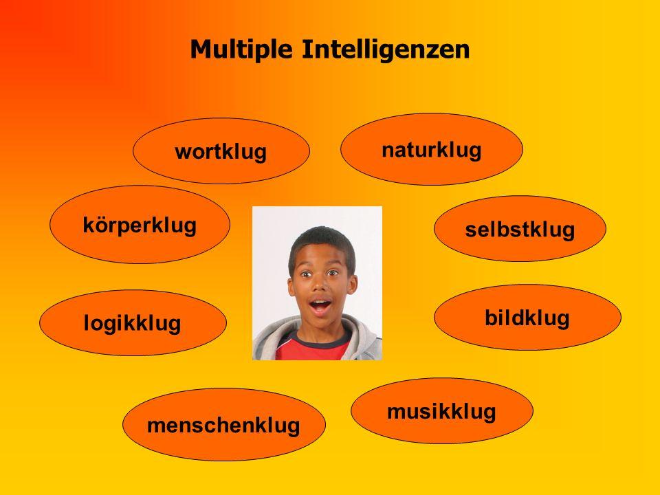 Multiple Intelligenzen logikklug selbstklug bildklug menschenklug naturklug körperklug wortklug musikklug