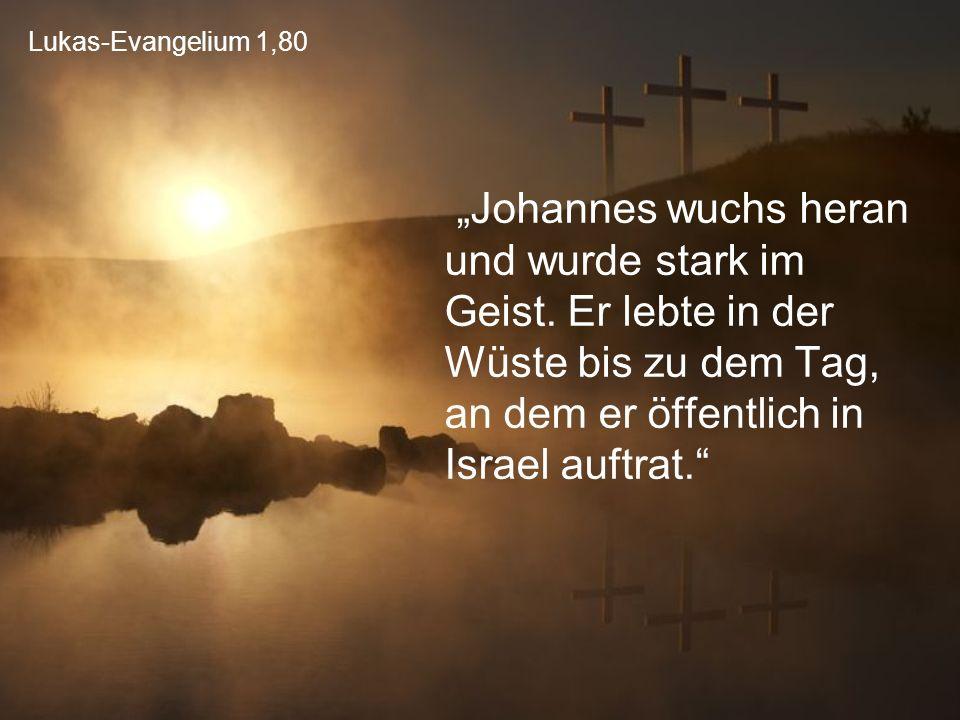 """Lukas-Evangelium 1,80 """"Johannes wuchs heran und wurde stark im Geist. Er lebte in der Wüste bis zu dem Tag, an dem er öffentlich in Israel auftrat."""""""