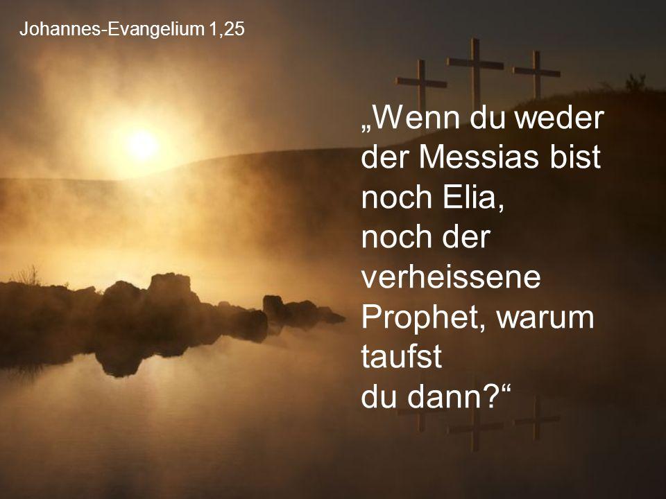 """Johannes-Evangelium 1,25 """"Wenn du weder der Messias bist noch Elia, noch der verheissene Prophet, warum taufst du dann?"""""""