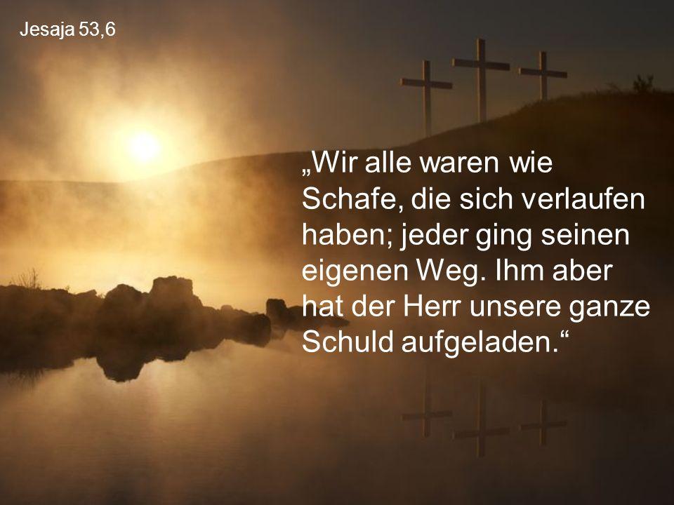 """Jesaja 53,6 """"Wir alle waren wie Schafe, die sich verlaufen haben; jeder ging seinen eigenen Weg. Ihm aber hat der Herr unsere ganze Schuld aufgeladen."""