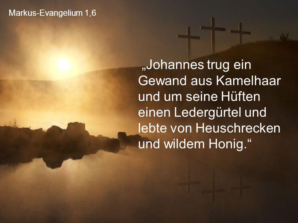 """Markus-Evangelium 1,6 """"Johannes trug ein Gewand aus Kamelhaar und um seine Hüften einen Ledergürtel und lebte von Heuschrecken und wildem Honig."""""""