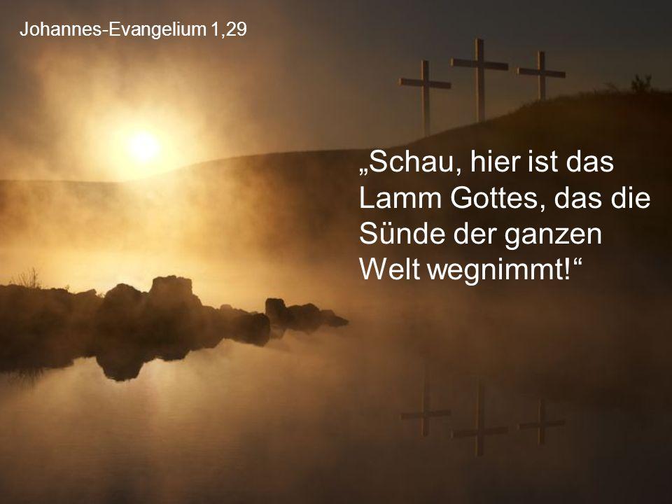 """Johannes-Evangelium 1,29 """"Schau, hier ist das Lamm Gottes, das die Sünde der ganzen Welt wegnimmt!"""""""