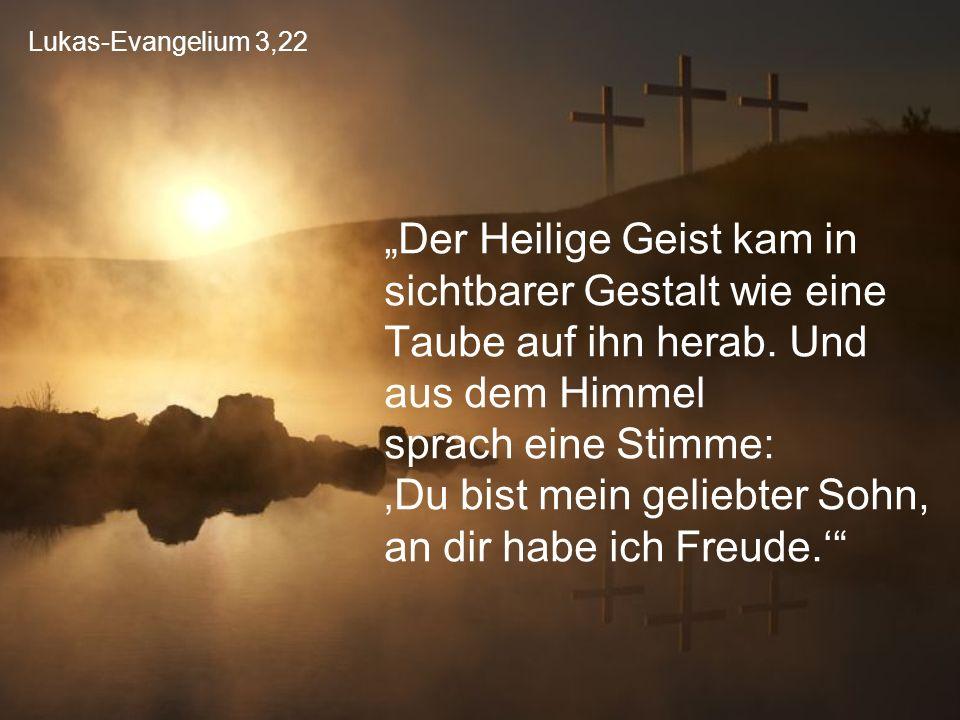 """Lukas-Evangelium 3,22 """"Der Heilige Geist kam in sichtbarer Gestalt wie eine Taube auf ihn herab. Und aus dem Himmel sprach eine Stimme: 'Du bist mein"""