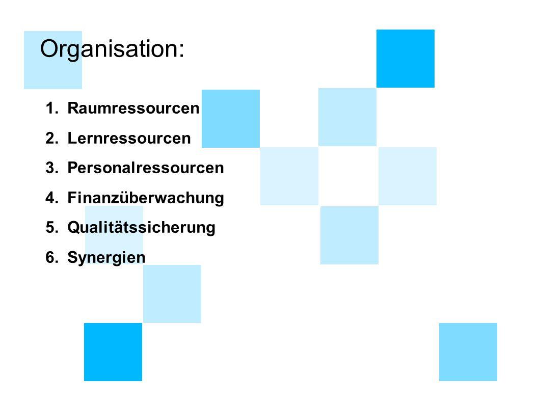 Organisation: 1. Raumressourcen 2. Lernressourcen 3. Personalressourcen 4. Finanzüberwachung 5. Qualitätssicherung 6. Synergien