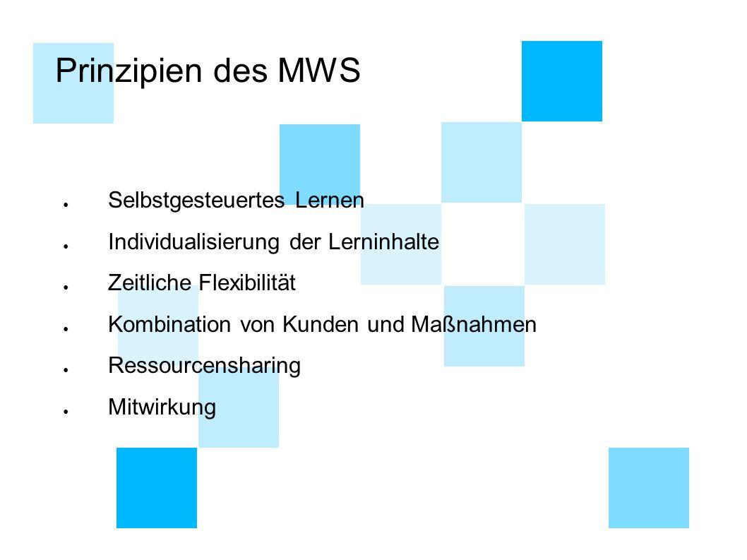 Prinzipien des MWS ● Selbstgesteuertes Lernen ● Individualisierung der Lerninhalte ● Zeitliche Flexibilität ● Kombination von Kunden und Maßnahmen ● R