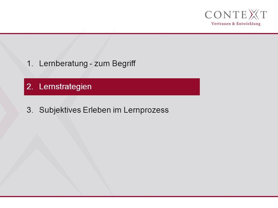 1.Lernberatung - zum Begriff 2.Lernstrategien 3.Subjektives Erleben im Lernprozess