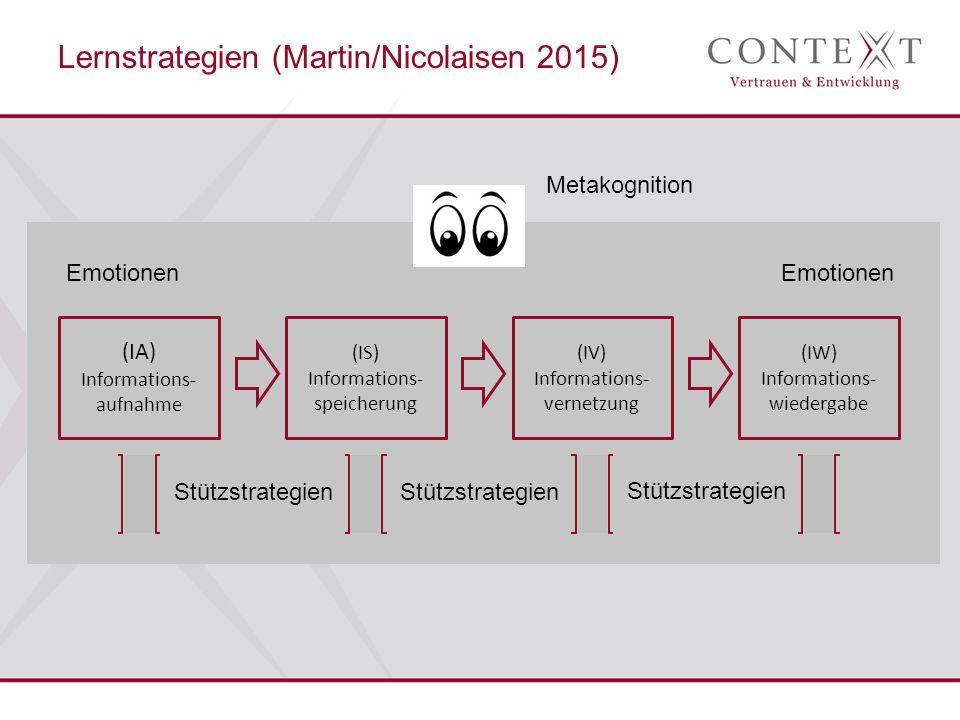(IA) Informations- aufnahme (IS) Informations- speicherung (IV) Informations- vernetzung (IW) Informations- wiedergabe Stützstrategien Emotionen Metakognition Lernstrategien (Martin/Nicolaisen 2015)