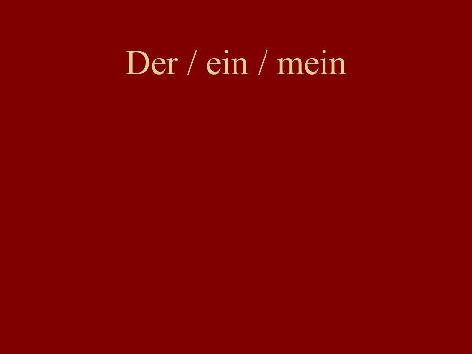 Der / ein / mein