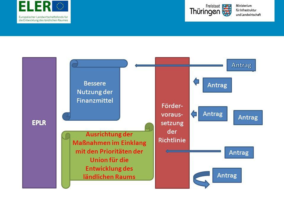 Rubrik Antrag Förder- voraus- setzung der Richtlinie Bessere Nutzung der Finanzmittel Ausrichtung der Maßnahmen im Einklang mit den Prioritäten der Union für die Entwicklung des ländlichen Raums