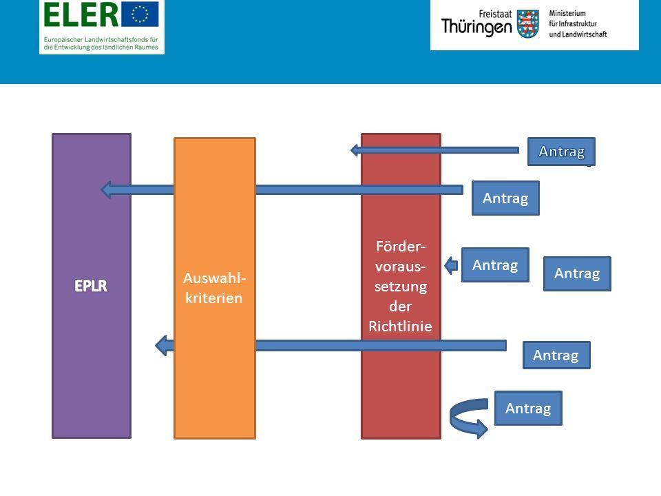 Rubrik Antrag Förder- voraus- setzung der Richtlinie Auswahl- kriterien