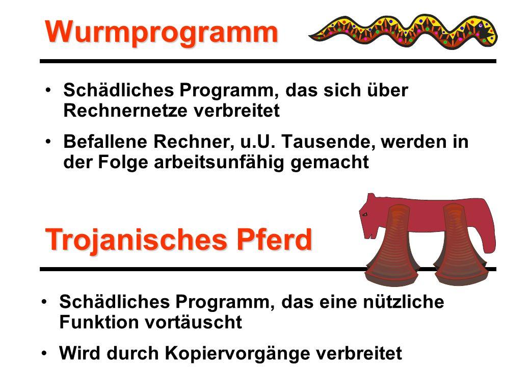 Wurmprogramm Schädliches Programm, das sich über Rechnernetze verbreitet Befallene Rechner, u.U.