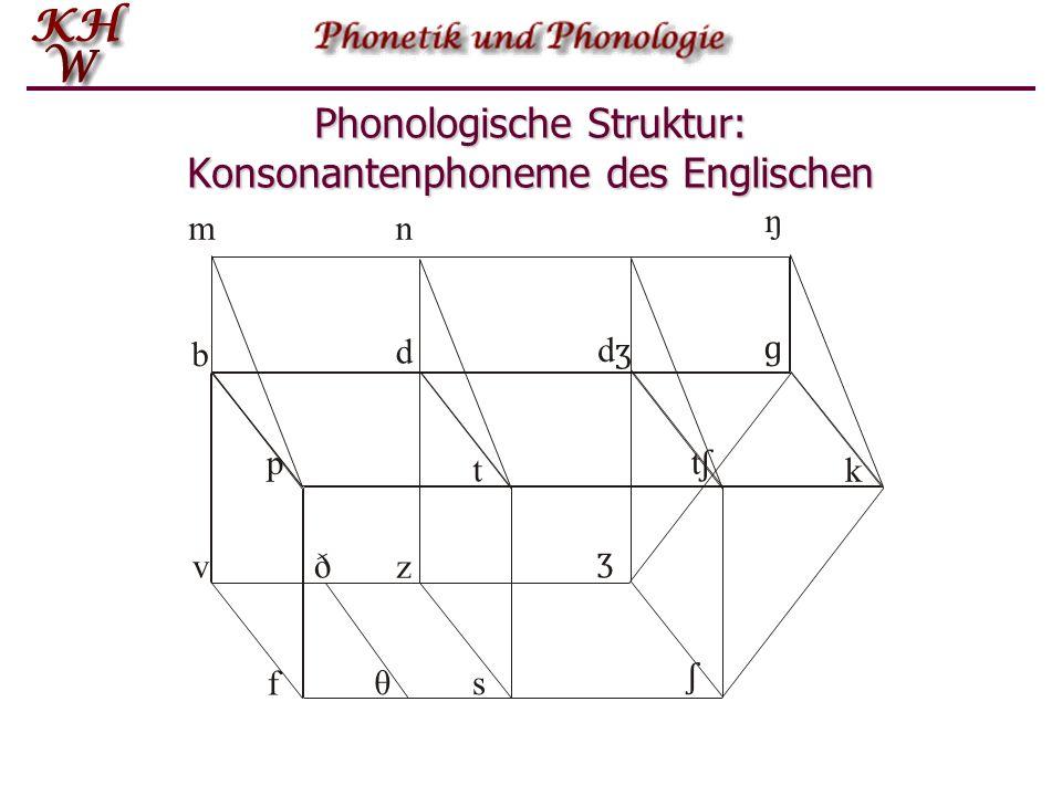 Phonologische Struktur: Konsonantenphoneme des Englischen mn ŋ p t tʃtʃ k dʒdʒ ɡ b d f v ʃ ʒ θ ð s z