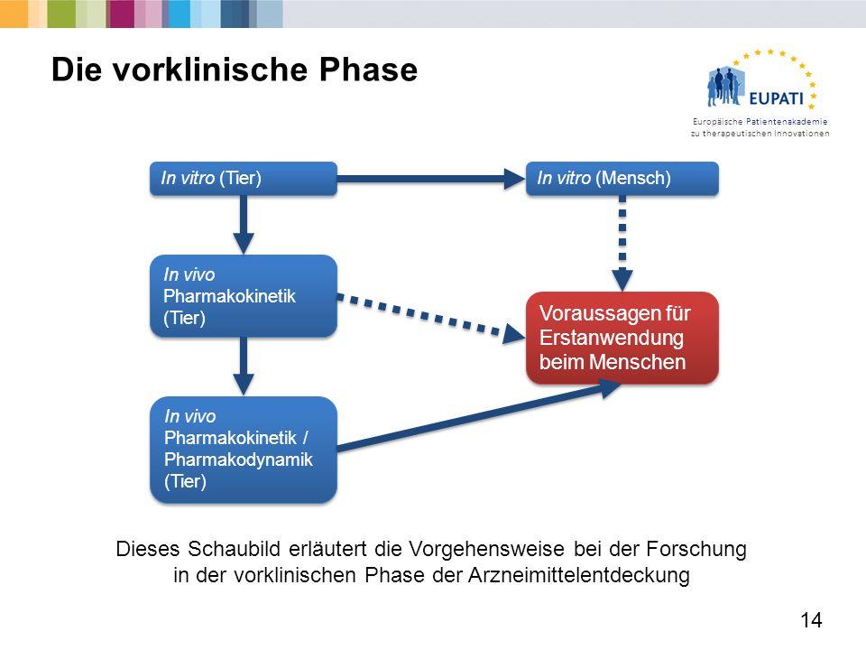 Europäische Patientenakademie zu therapeutischen Innovationen 14 Die vorklinische Phase Dieses Schaubild erläutert die Vorgehensweise bei der Forschun