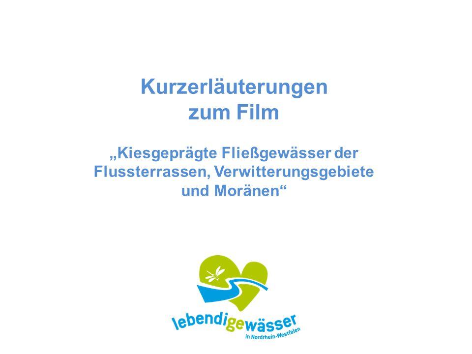 """Kurzerläuterungen zum Film """"Kiesgeprägte Fließgewässer der Flussterrassen, Verwitterungsgebiete und Moränen"""