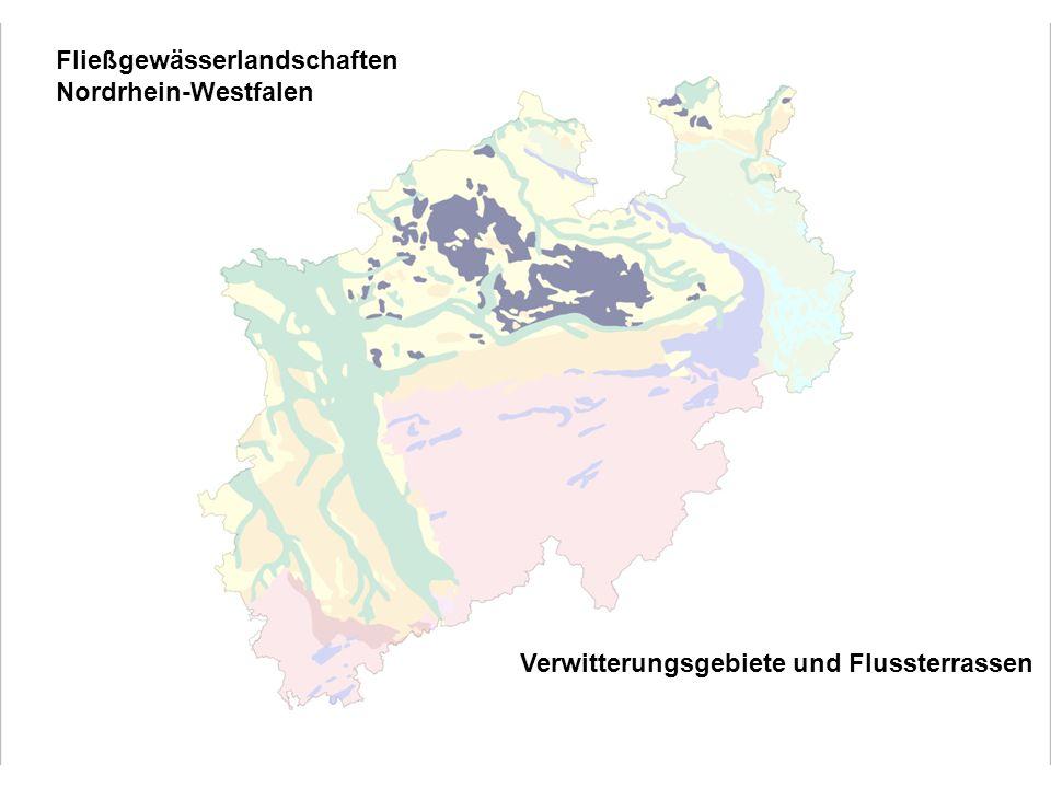 Verwitterungsgebiete und Flussterrassen