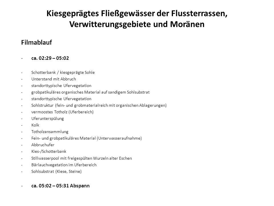 Kiesgeprägtes Fließgewässer der Flussterrassen, Verwitterungsgebiete und Moränen Filmablauf -ca. 02:29 – 05:02 -Schotterbank / kiesgeprägte Sohle -Unt