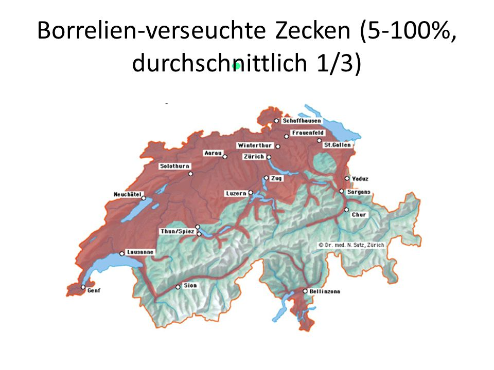 Borrelien-verseuchte Zecken (5-100%, durchschnittlich 1/3)