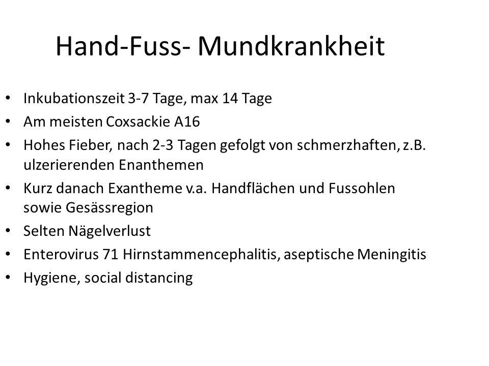 Hand-Fuss- Mundkrankheit Inkubationszeit 3-7 Tage, max 14 Tage Am meisten Coxsackie A16 Hohes Fieber, nach 2-3 Tagen gefolgt von schmerzhaften, z.B.