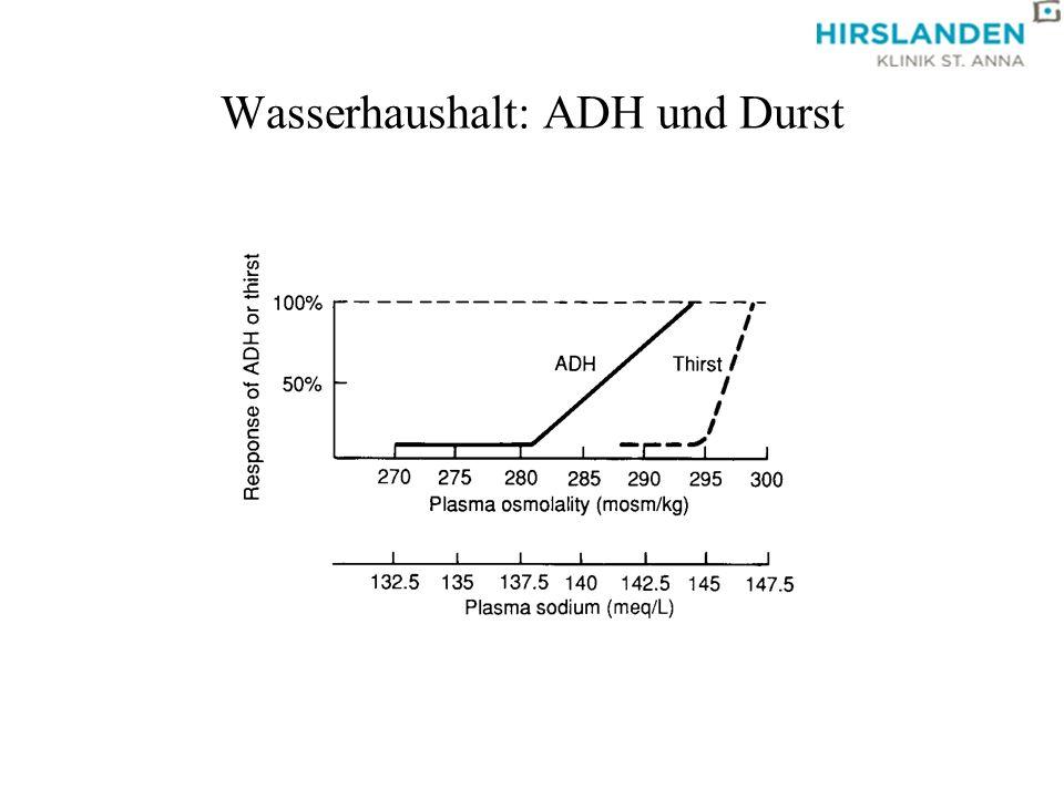 Wasserhaushalt: ADH und Durst