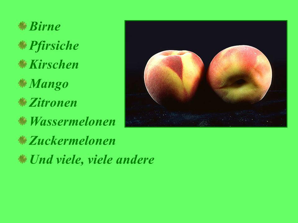 Birne Pfirsiche Kirschen Mango Zitronen Wassermelonen Zuckermelonen Und viele, viele andere