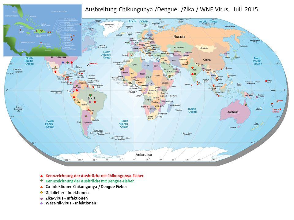 Ausbreitung Chikungunya-/Dengue- /Zika-/ WNF-Virus, Juli 2015 Bermuda Samoa Cook- Islands Kennzeichnung der Ausbrüche mit Chikungunya-Fieber Kennzeichnung der Ausbrüche mit Dengue-Fieber Co-Infektionen Chikungunya-/ Dengue-Fieber Gelbfieber - Infektionen Zika-Virus - Infektionen West-Nil-Virus - Infektionen